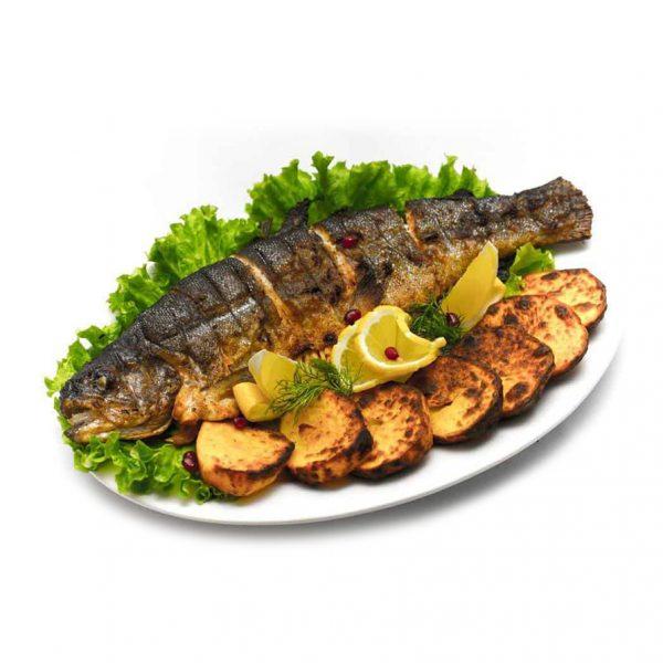 Apollo Fish